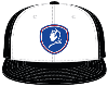 Cover Image for BlueDevils Gray/Blue Baseball Style Hat PTSS30