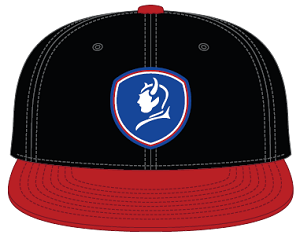 Cover Image For BlueDevils Black/Red Baseball Style Hat PTS
