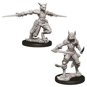 Image For Tabaxi Female Rogue 2pk Unpainted