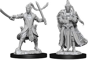 Image For Elf Male Paladin 2pk Unpainted