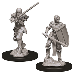 Image For Human Female Fighter 2pk Unpainted