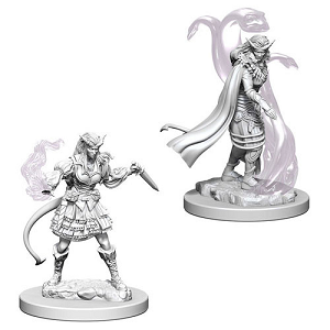 Cover Image For Tiefling Female Sorcerer 2pk Unpainted